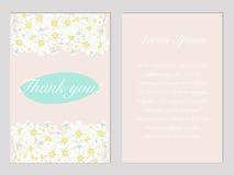 谢谢与春黄菊的明信片在柔和的淡色彩 免版税图库摄影