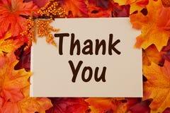 谢谢拟订与秋天叶子 免版税库存照片