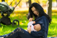 谨慎地哺乳婴孩的母亲户外 库存照片