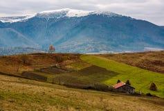 谷仓和偏僻的树在山坡在高山 库存照片