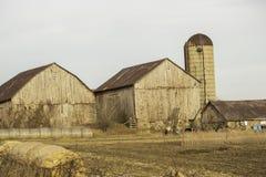 谷仓和大包干草 库存照片