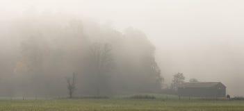 谷仓有雾cades的小海湾 图库摄影