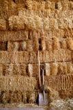 谷仓金黄被堆积的秸杆 图库摄影