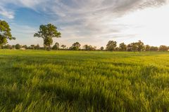 谷和泰国的美丽的天空的风景 免版税库存图片