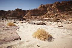 谷在有山和太阳的西奈沙漠 免版税库存图片