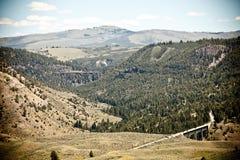 谷在黄石国家公园 免版税库存照片