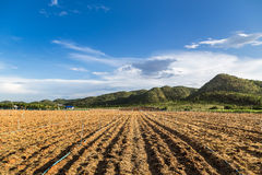 谷山的农田 免版税库存照片
