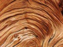 谷物扭转的木头 免版税库存图片