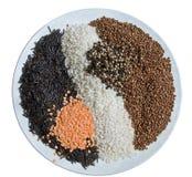 谷物混合物 免版税库存照片