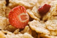 谷物烘干了草莓 库存照片