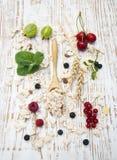 谷物用新鲜水果 图库摄影