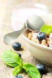 谷物用的酸奶和垂直新鲜的蓝莓 免版税图库摄影