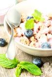 谷物用酸奶和新鲜的蓝莓捞出特写镜头 免版税库存图片