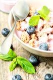 谷物用酸奶和新鲜的蓝莓 免版税库存图片