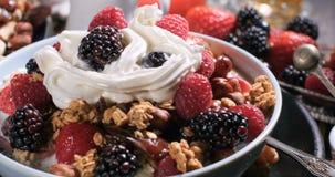 谷物看法用莓果、干果子、牛奶和打好的奶油 免版税库存照片