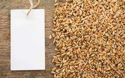 谷物纹理麦子木头 免版税库存照片
