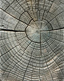 谷物被风化的木头 图库摄影