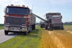 谷物装载运输 图库摄影