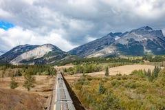 谷物运输车和山顶上的看法  免版税库存照片