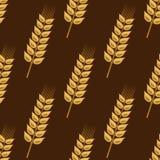 谷物金黄麦子耳朵的无缝的样式 库存图片