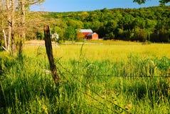 谷的农场 免版税库存图片