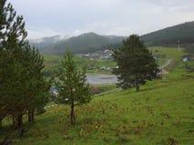 谷的图片在雨以后的 库存照片