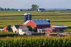 谷的大兰开斯特县门诺派中的严紧派的农场 免版税库存照片