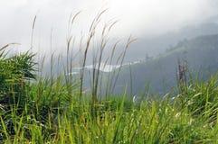 谷的湖 库存照片