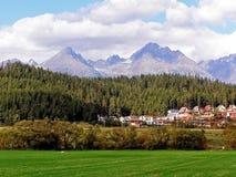 谷的看法在山和森林1的 库存照片