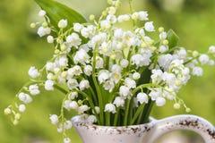 谷的Lilly在白色土气花瓶开花 库存图片