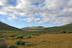 谷视图科罗拉多山峰 免版税图库摄影