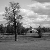 谷仓和杜松树 库存图片
