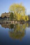 谷仓和柳树在池塘 库存图片