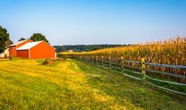 谷仓和麦地在一个农场在农村约克县,宾夕法尼亚 免版税库存照片