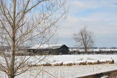 谷仓在冬天 库存照片