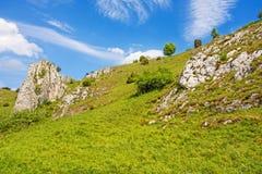谷Eselsburger Tal -印象深刻的岩石 免版税图库摄影