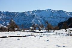 谷Sarihosor和河Surkhob的床 库存照片