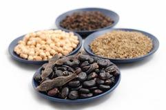 豆、鸡豆、小茴香和黑胡椒在板材 免版税库存照片