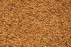 豆关闭咖啡 免版税库存图片