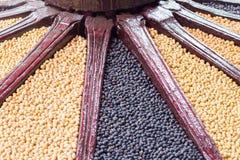 黑豆和大豆 库存图片