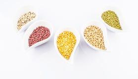 豆和扁豆品种III 免版税图库摄影