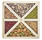 豆和扁豆摘要 免版税库存照片