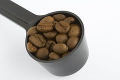 豆咖啡一匙 库存照片
