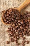 豆咖啡匙 库存图片