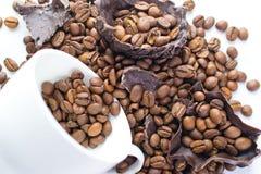 豆咖啡杯白色 免版税库存图片