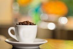 豆咖啡杯白色 库存照片
