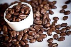 豆咖啡浓咖啡 库存照片