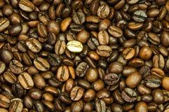 豆咖啡金子 免版税库存图片