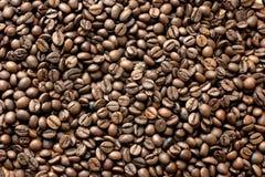 豆咖啡 图库摄影