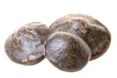 豆异乎寻常的查出的苏门答腊 库存照片
